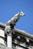 stock photo of gargoyles  - Gargoyle in the Basilica of the Sacre Coeur in Paris - JPG