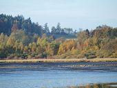 pic of bohemia  - view autumn landscape southern Bohemia - JPG