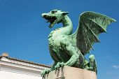 picture of dragon  - Green dragon on the dragon bridge in Ljubljana on a sunny day - JPG
