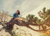picture of juniper-tree  - Beautiful young woman sitting on fairy old tree in summer - JPG