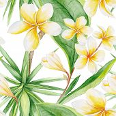 pic of jungle flowers  - Hand - JPG