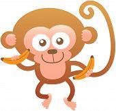 stock photo of bulge  - Cute baby monkey with big head - JPG