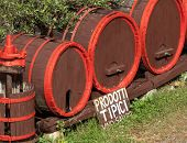 pic of wine-press  - Wine barrels with wine press in outdoor field Tuscany - JPG