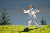 picture of tai-chi  - tai chi exercise in nature on green field slovenia europe - JPG