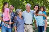 stock photo of extended family  - Extended family smiling in the park on a sunny day - JPG