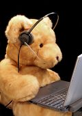 image of toy phone  - a teddy bear prepared for customer service or to chat on the phone or online - JPG