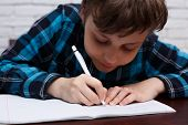 Close Up Of Diligent Schoolboy Writing Down A Task Into A Notebook.  Elementary School, Education, C poster