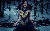 Dark queen, Beautiful brunette woman with gothic dress made in gold and black threads. It is in a sn poster