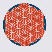 Vector Sacred Geometry Illustration: Variant Of The Flower Of Life, Also Known The Pattern Of Creati poster