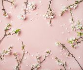 Spring Floral Background, Texture And Wallpaper. Flat-lay Of White Almond Blossom Flowers Over Light poster