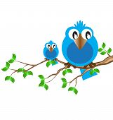 the blue birdie on a branch speaks