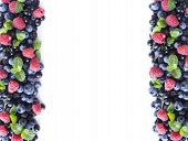 Mix Berries And Fruits On A White. Berries And Fruits At Border Of Image With Copy Space For Text. R poster