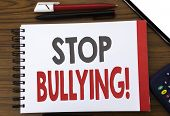 Handwritten Text Showing Stop Bullying. Business Concept Writing For Prevention Problem Bully Writte poster