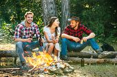 Enjoying Camping Holiday In Countryside. Happy People Sitting Around Campfire. Friends Enjoy Weekend poster