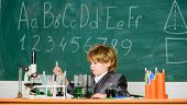 Little Boy Is Making Science Experiments. Little Boy At Lesson. Back To School. Biology Science. Sch poster