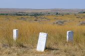 Little Bighorn soldier grave stones