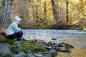stock photo of mckenzie  - A female hiker takes a rest and looks out over the water of the McKenzie River in Oregon - JPG