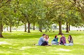 stock photo of denim jeans  - Group of young college students sitting on grass in the park - JPG