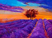image of fascinating  - Original oil painting of lavender fields on canvas - JPG