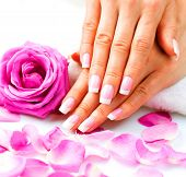 stock photo of french manicure  - Manicure and Hands Spa - JPG
