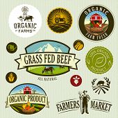 picture of food label  - set of retro organic  - JPG