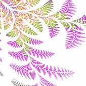 image of asymmetric  - Asymmetrical pattern of the leaves in purple and green - JPG