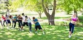 pic of tug-of-war  - Fit woman playing tug of war with group of friends in the park - JPG