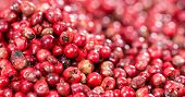 Pink Peppercorns Background Image