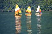 picture of annecy  - sailing dinghies on Lake Annecy in France