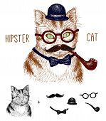 picture of tabby-cat  - Hipster tabby cat isolated on white with hipster elements and icons - JPG
