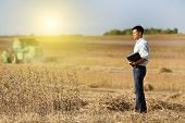 picture of soybeans  - Young landowner with laptop supervising soybean harvesting work - JPG