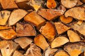 picture of firewood  - Firewood background  - JPG