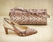 stock photo of clutch  - Close up of shoe and clutch bag