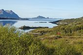 picture of lofoten  - View to fjord with mountains in Norway - JPG