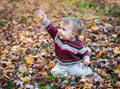 picture of waving hands  - A boy sits on a leaf covered ground in a forested landscape holding up one hand waving while holding a maple leaf in the other hand during the autumn season - JPG