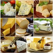 foto of brie cheese  - collage of various types of cheese  - JPG