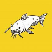 foto of catfish  - Catfish Doodle - JPG