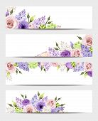 stock photo of purple rose  - Vector web banners with pink - JPG