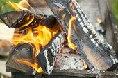 image of brazier  - bright flame burning wood in a brazier - JPG