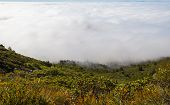 stock photo of marines  - View of Marin County bay area cover by heavy fog under a blue sunny day - JPG