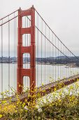 pic of marines  - View of the Golden Gate and San Francisco bay area from the Marin Headlands - JPG