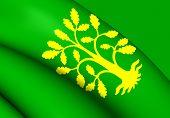 stock photo of vest  - 3D Flag of the Vest - JPG