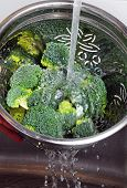 picture of cruciferous  - Rinsing broccoli in a colander under a running tap - JPG