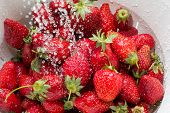 picture of freezing  - Freezed drops of water over the ripe strawberries rinsed with water in the white colander - JPG