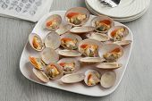 Dish with open cooked smooth clams as a gourmet poster
