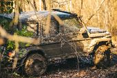 Suv Covered With Mud On Path Covered With Leaves. Dirty Offroad Car With Fall Forest On Background.  poster