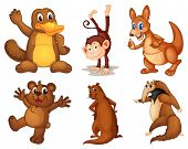 picture of platypus  - Illustration of a set of cute animals  - JPG