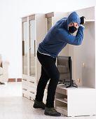 Man burglar stealing tv set from house poster