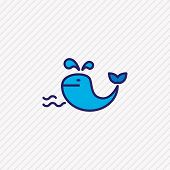 Illustration Of Whale Icon Colored Line. Beautiful Sea Element Also Can Be Used As Cetacean Icon Ele poster