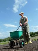 Female gardener spreading grass seeds using seeder